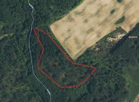 Parduodamas miško ūkio paskirties sklypas 3,33 ha Aguonio k. Liubavo sen. Kalvarijos sav.